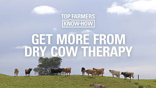 Get more from dry cow therapy