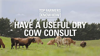 Have a useful dry cow consult